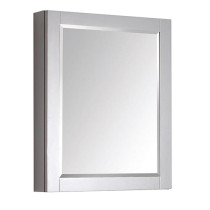 Avanity Brooks/Modero 24-Inch Chilled Gray Modern Bathroom Mirror/Medicine Cabinet